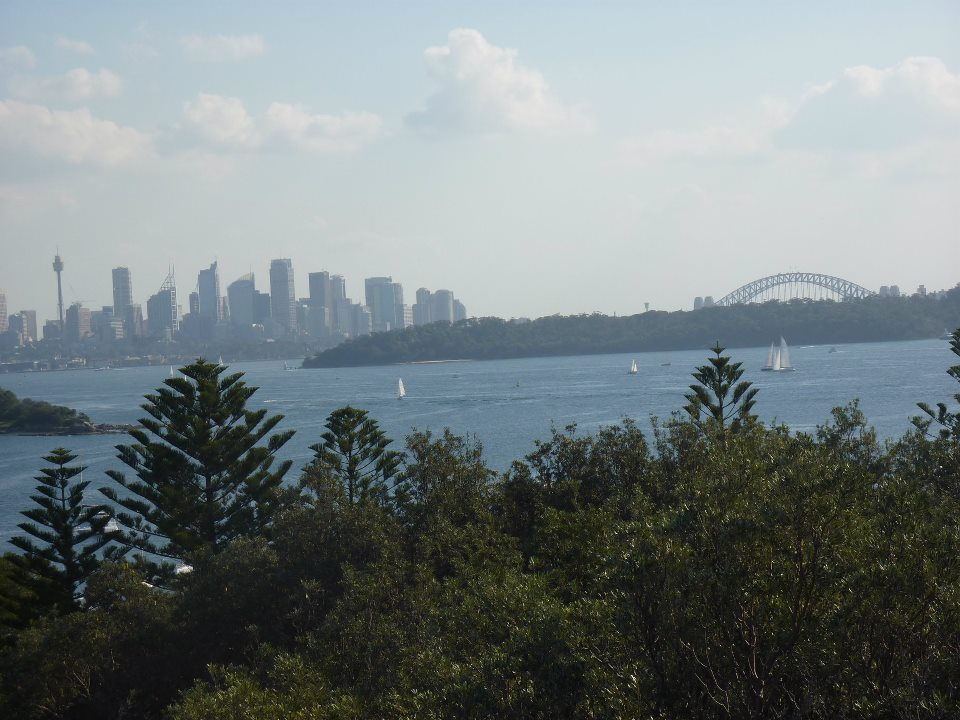 Lovely Sydney photo to make up for powerline story